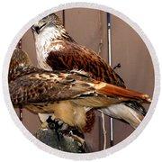 Hawks Round Beach Towel