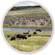 Hayden Valley Bison Herd In Yellowstone National Park Round Beach Towel
