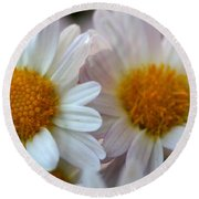 Hazy Day Daisies  Round Beach Towel
