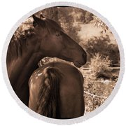Head And Tail Round Beach Towel