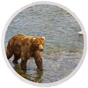 Head Grizzly Bear And Sea Gull In Moraine River In Katmai Np-ak  Round Beach Towel