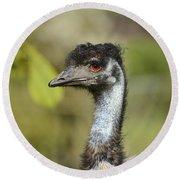 Head Of An Australian Emu Round Beach Towel