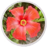 Head On Shot Of A Red Tropical Hibiscus Flower Round Beach Towel