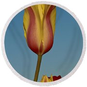 Heads Above The Rest Round Beach Towel