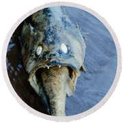 Heads Or Tails Round Beach Towel