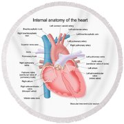 Heart Anatomy Round Beach Towel
