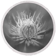 Heart Of A Red Clematis In Black And White Round Beach Towel