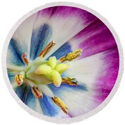 Heart Of A Tulip Round Beach Towel