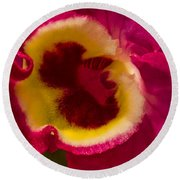 Heart Of An Orchid Round Beach Towel