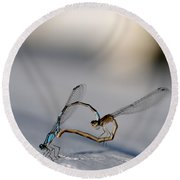 Heart Of The Damselfly Round Beach Towel