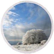 Heavy Frost Round Beach Towel by Anne Gilbert
