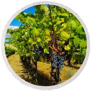 Heavy On The Vine At The High Tower Winery  Round Beach Towel