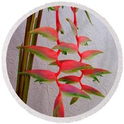 Heliconia Platystachys Round Beach Towel