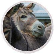Hello Donkey Round Beach Towel