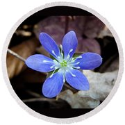 Hepatica Blue Round Beach Towel