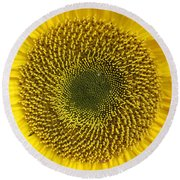 Here Comes The Sun.... Round Beach Towel