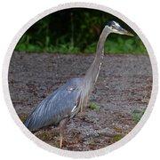 Heron 14-1 Round Beach Towel