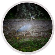 Heron 14-6 Round Beach Towel