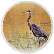 Heron At Sunset Round Beach Towel by Marty Koch