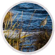 Heron Fishing Round Beach Towel