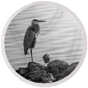 Heron In Black And White Round Beach Towel