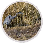 Heron In The Grass Round Beach Towel
