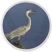 Heron In Wading Round Beach Towel