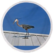 Heron On Rooftop Round Beach Towel