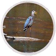 Heron On The Creek Round Beach Towel