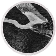 Heron On The Move Up Close Round Beach Towel