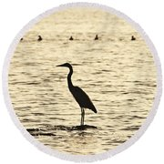 Heron Standing In Water Round Beach Towel