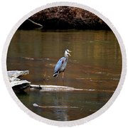 Heron Talking Round Beach Towel