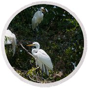 Heron Trio Round Beach Towel
