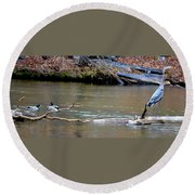 Heron With Ducks Round Beach Towel