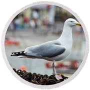 Herring Gull At The Harbour Round Beach Towel