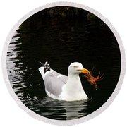 Herring Gull With Crab Round Beach Towel