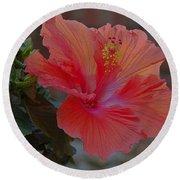 Hibiscus 1 Round Beach Towel