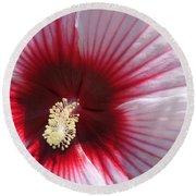 Hibiscus-callaway Gardens Round Beach Towel