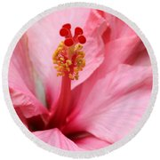 Hibiscus Flower Close Up Round Beach Towel