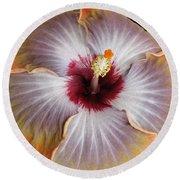 Hibiscus  Round Beach Towel