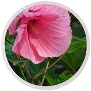 Hibiscus Profile Round Beach Towel