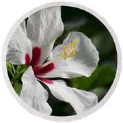 Hibiscus White Wings Round Beach Towel