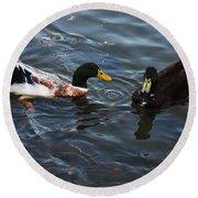Hibred Ducks Swimming In Beech Fork Lake Round Beach Towel