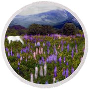 High Country Lupine Dreams Round Beach Towel