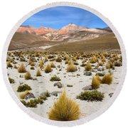 High In The Chilean Altiplano Round Beach Towel
