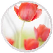 High Key Tulips Round Beach Towel