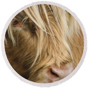 Highland Cow Portrait Round Beach Towel