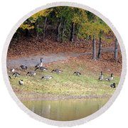 Hillside Of Canadian Geese Round Beach Towel
