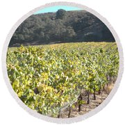 Hillside Vineyard Round Beach Towel