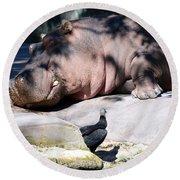 Hippo And Friend Round Beach Towel